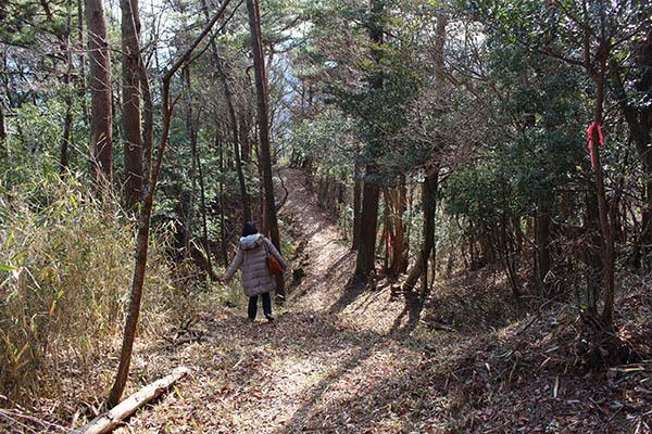 三国林道 (11)