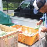 新鮮野菜あふれる道の駅の朝
